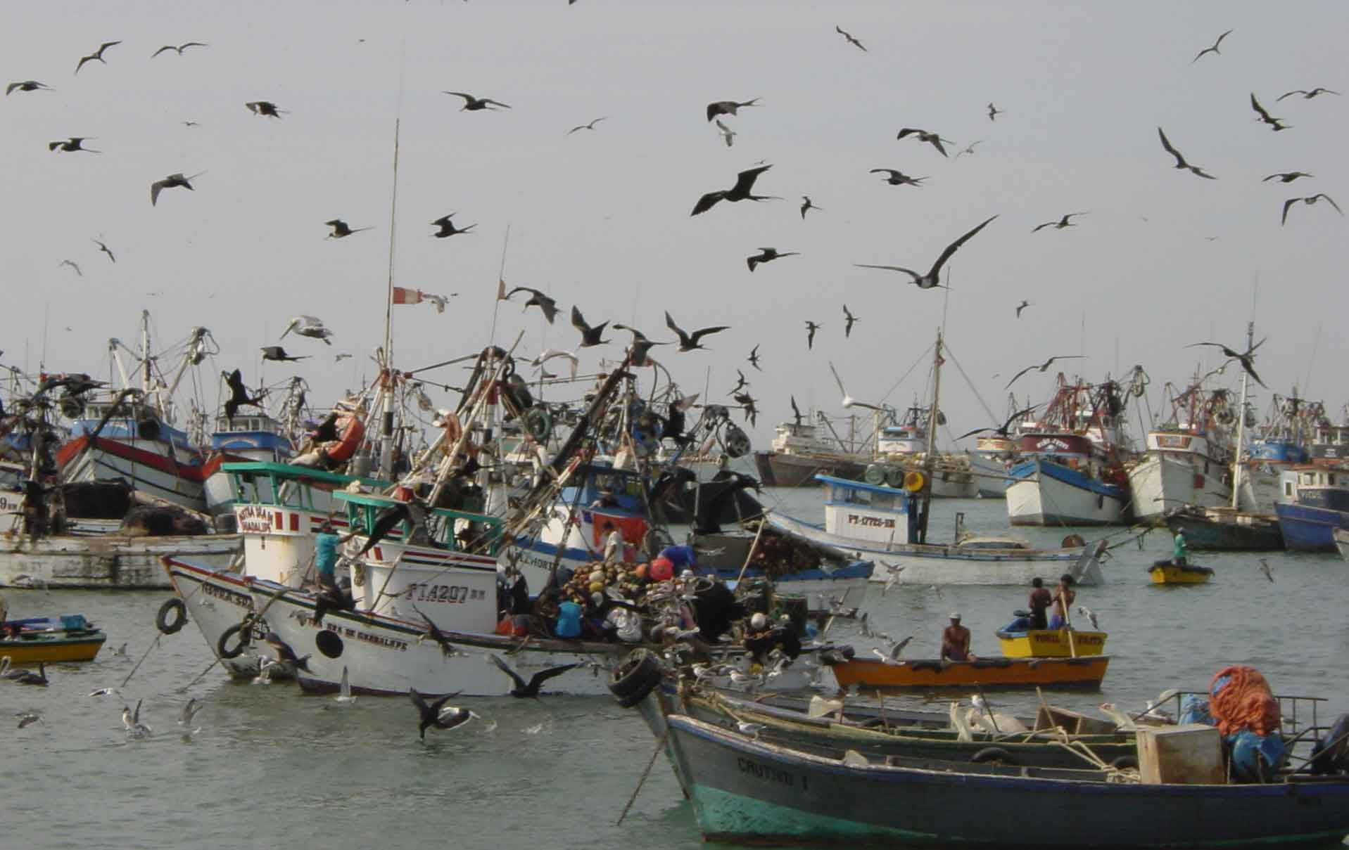 pescaartesanal
