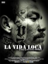La_vida_loca-551985088-main